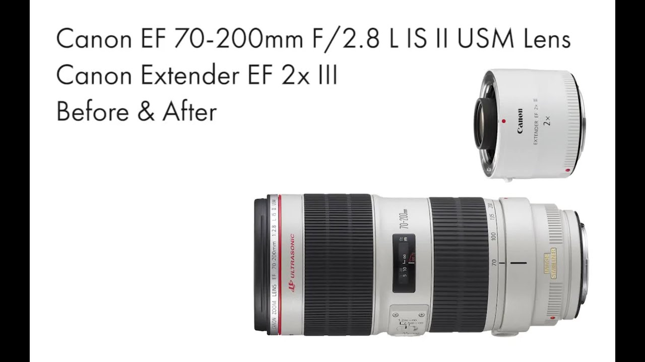 canon 70 200 f 2.8 review