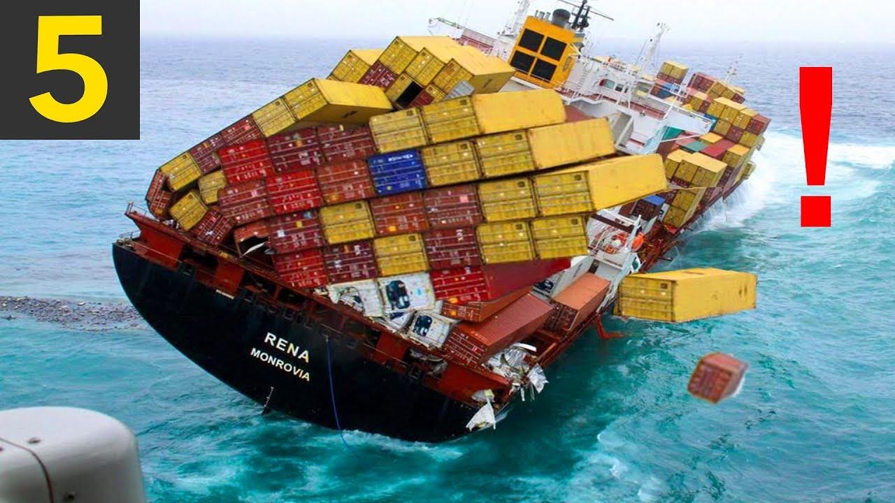 trans international moving & shipping reviews