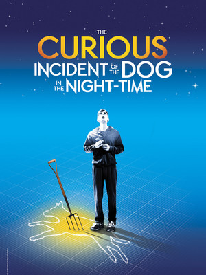 curious incident of the dog in the nighttime review 2016