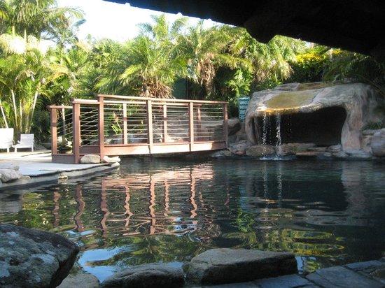 breakfree aanuka beach resort reviews