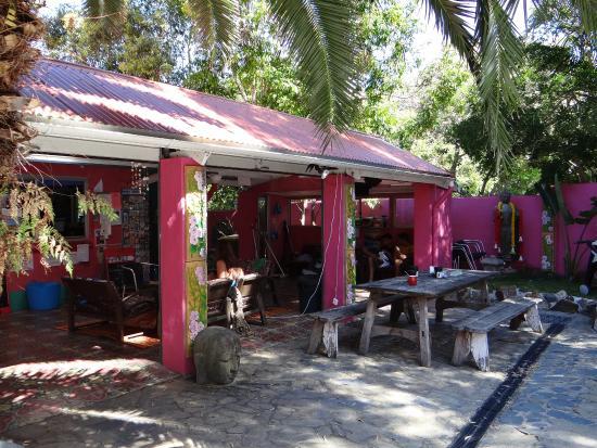 dolphins beach house noosa reviews
