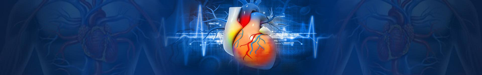 cardiovascular disease peer reviewed journal