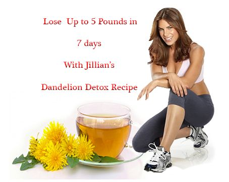 dandelion root weight loss review