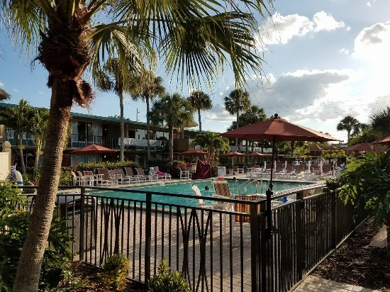 magic tree resort kissimmee florida reviews