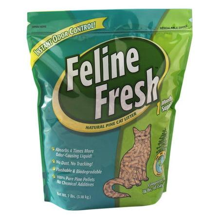 pine pellets cat litter reviews