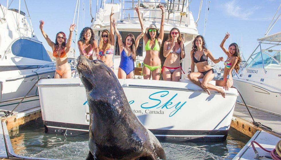 deep sea fishing cabo san lucas reviews