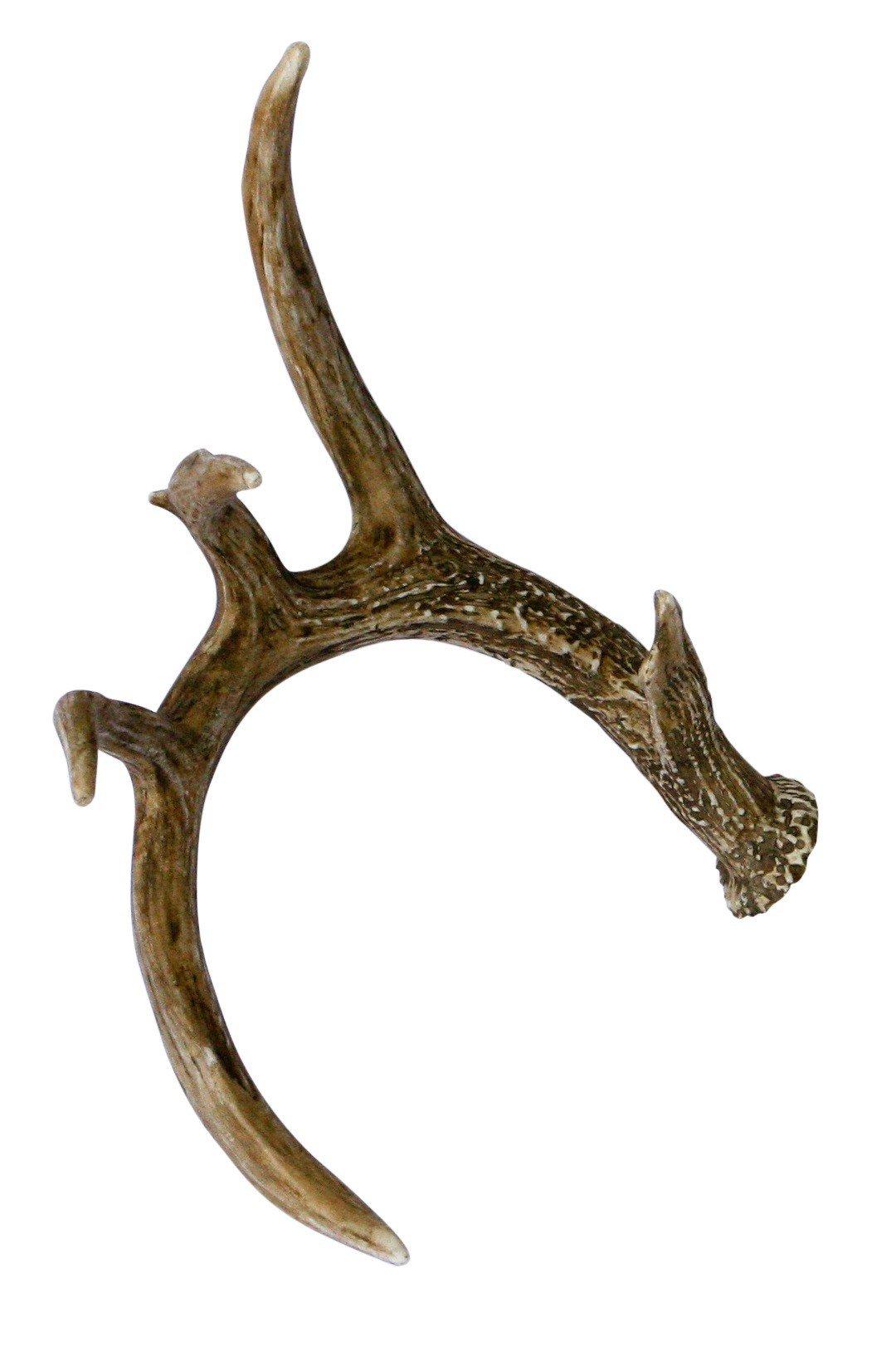 elk antlers by encore reviews