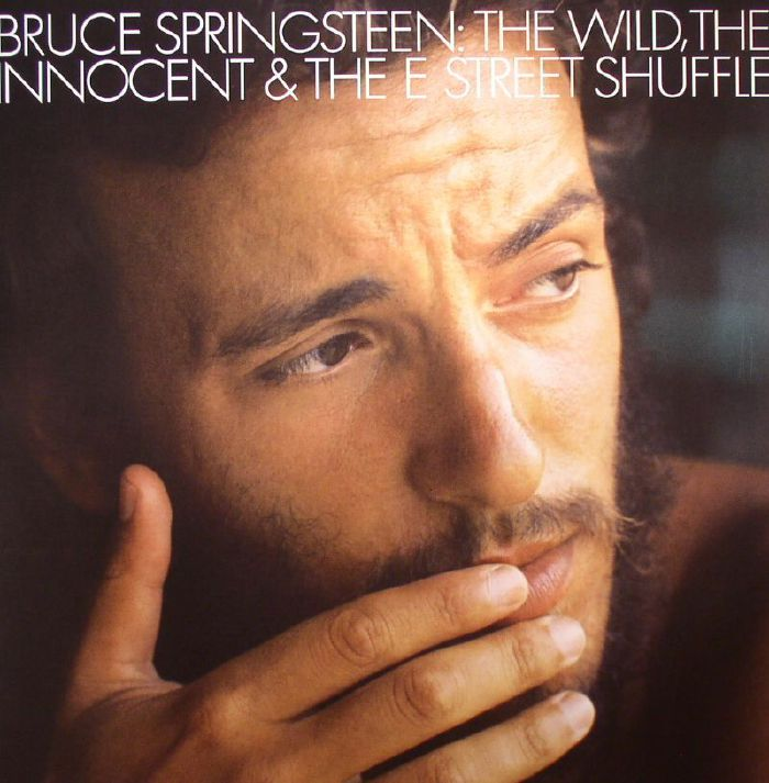 the wild the innocent and the e street shuffle review
