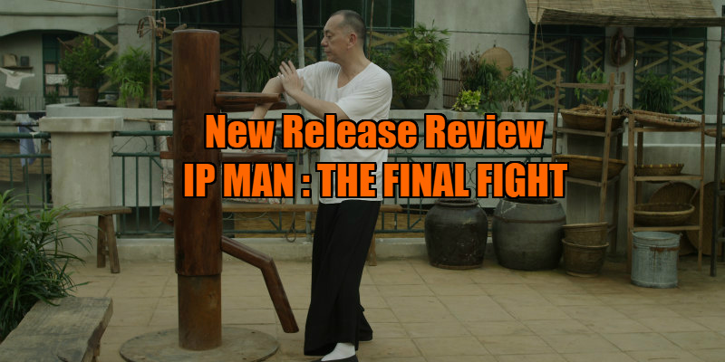 ip man the final fight review