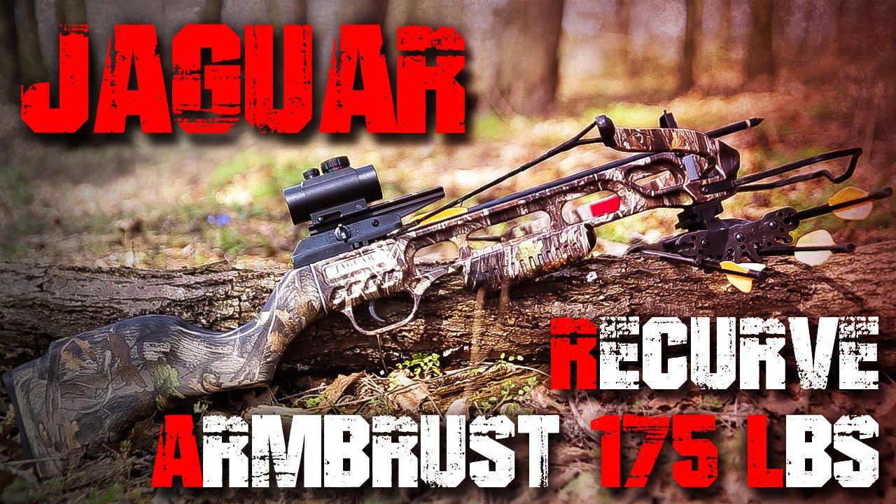 jaguar 175 pounds crossbow review