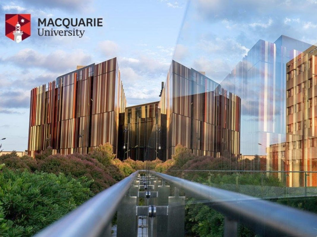 macquarie university ranking and review