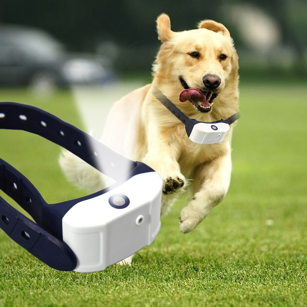 spray bark control collar reviews