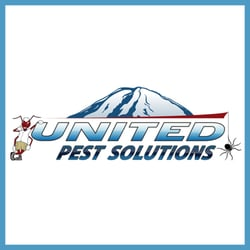 sydneys best pest control reviews