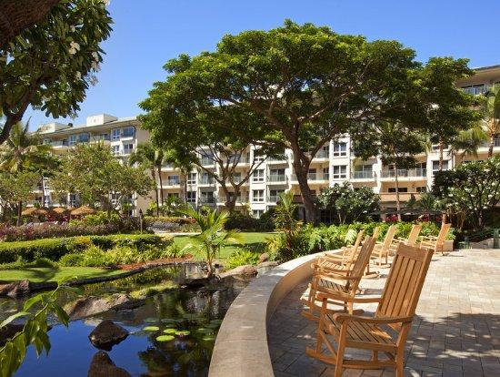 westin kaanapali ocean resort villas north reviews
