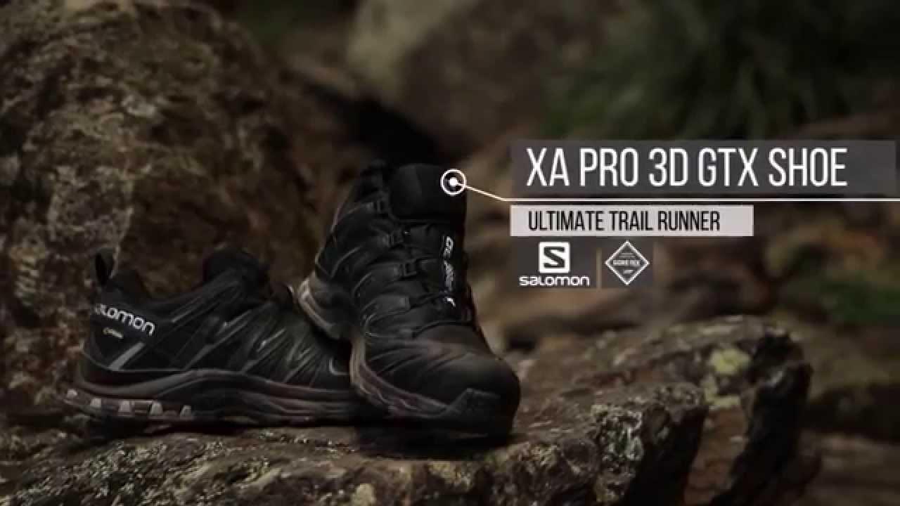 xa pro 3d gtx review